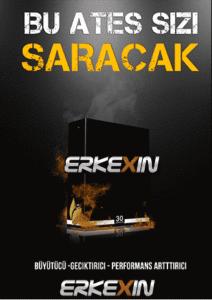 Erkexin