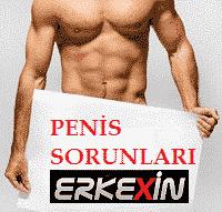 Penis sorunları