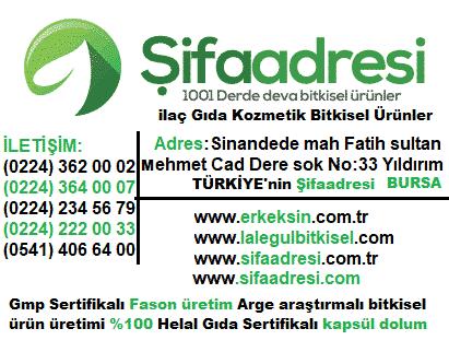 Bursa Bitkisel Ürünler